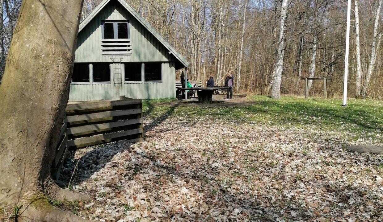 Sejr  - en hytte med skov og sø