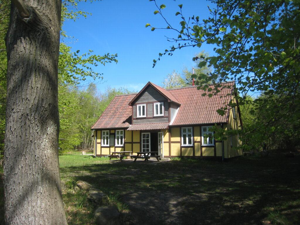 Skovlyst i Geelsskov