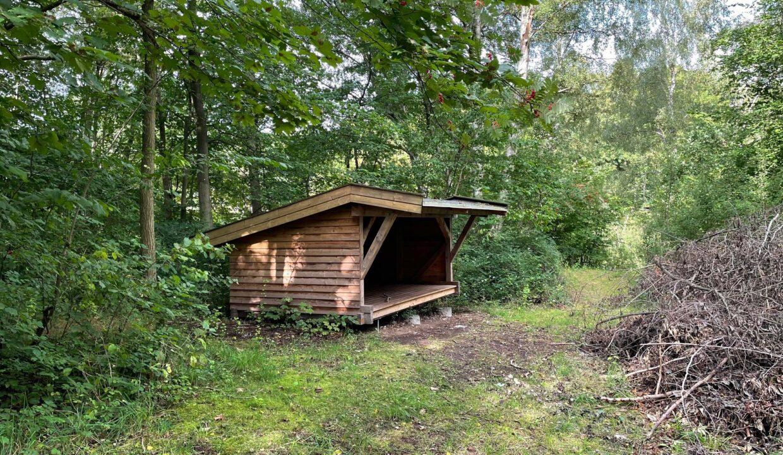 Shelter1